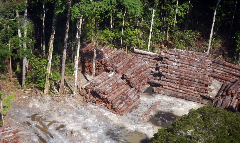 madeira-ilegal-apreendida-pela-prf-este-ano-supera-em-95%-a-de-2019