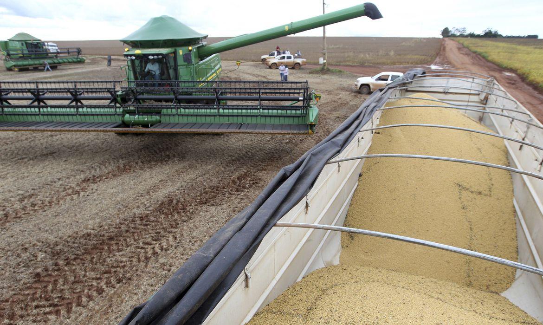 conab-estima-colheita-de-264,8-milhoes-de-toneladas-de-graos