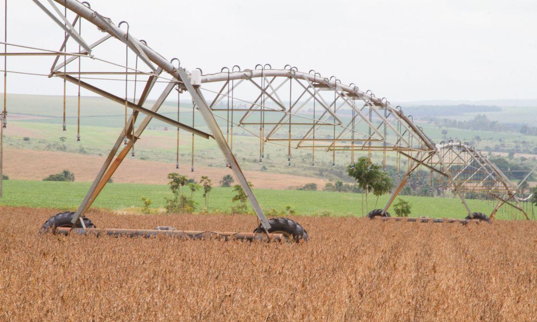 """governo-afirma-que-soja-brasileira-nao-""""exporta-desmatamento"""""""