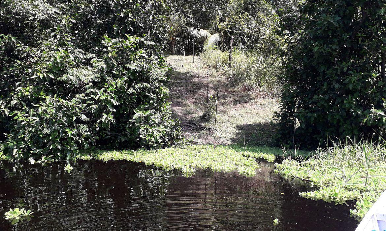 mourao-defende-novo-modelo-de-desenvolvimento-para-a-amazonia