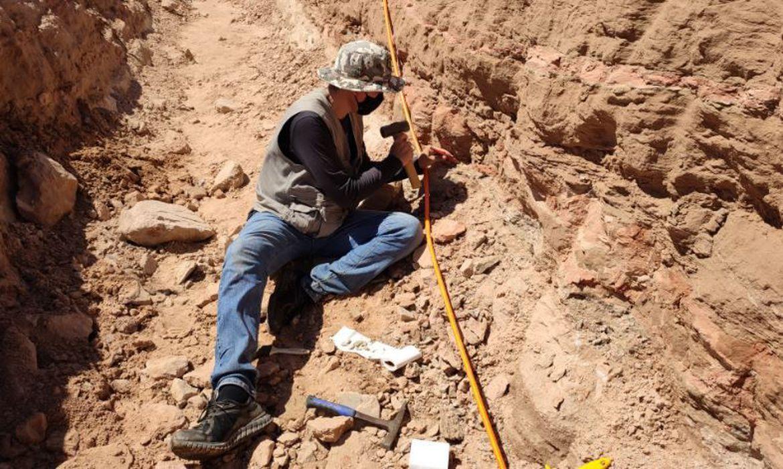 escavacao-em-rodovia-de-sp-revela-fragmentos-de-dinossauro