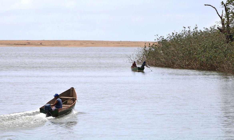 mariana:-pesquisadores-encontram-metais-toxicos-em-peixes-do-rio-doce