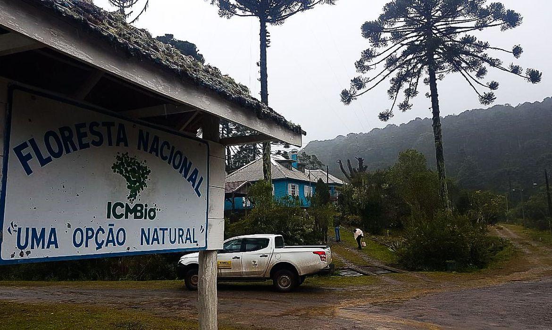 mma-abre-edital-para-concessao-da-floresta-nacional-de-canela,-no-rs