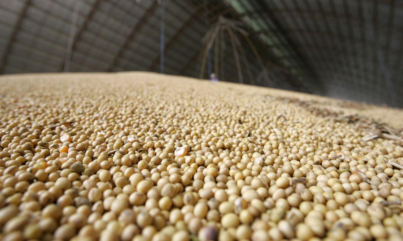 agencia-brasil-explica:-o-que-sao-commodities