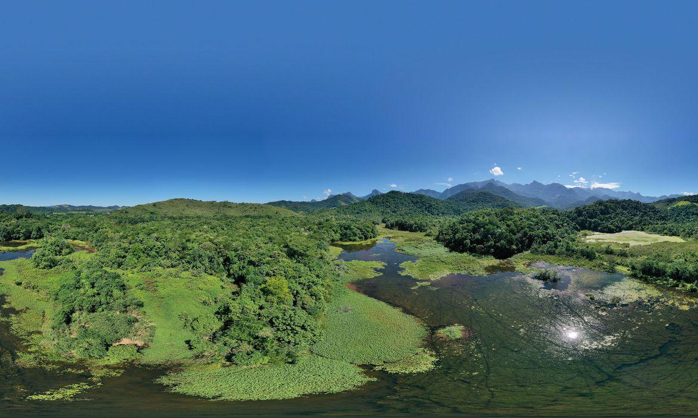 bosque-da-memoria-faz-homenagem-a-vitimas-da-covid-19-no-estado-do-rio