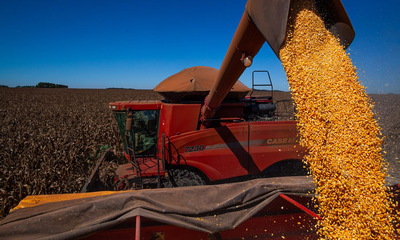 conab-estima-colheita-de-260,8-milhoes-de-toneladas-na-safra-2020/2021