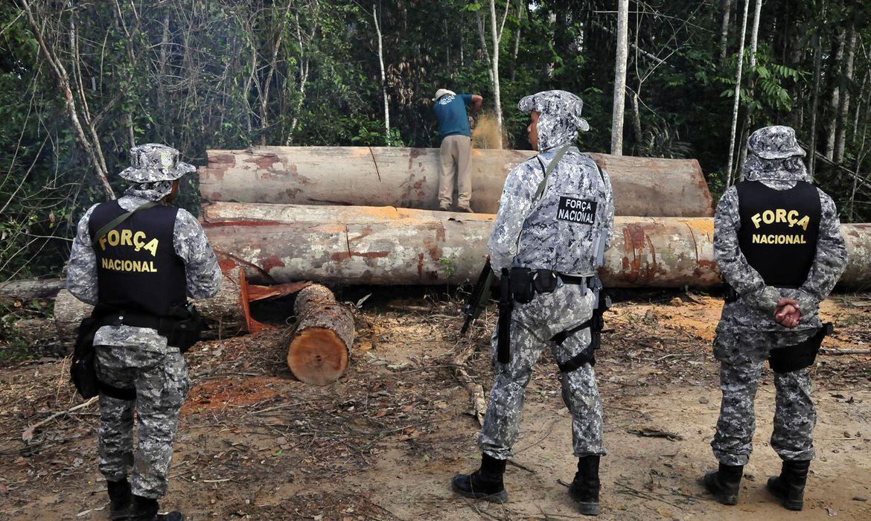 governo-autoriza-forcas-armadas-a-combater-desmatamento-em-mato-grosso