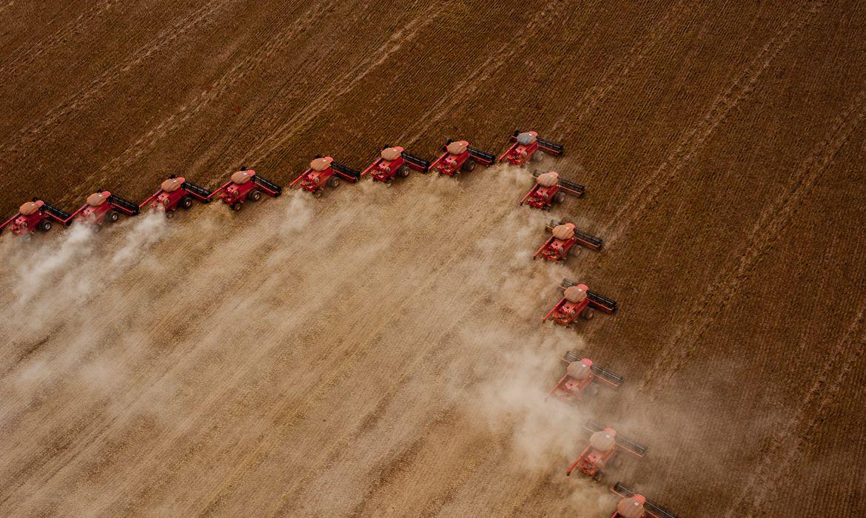 ipea:-exportacoes-do-agronegocio-sobem-20,9%-no-1o-semestre