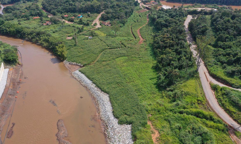 reflorestamento-em-brumadinho-usa-tecnicas-ineditas,-mas-so-atingiu-1%