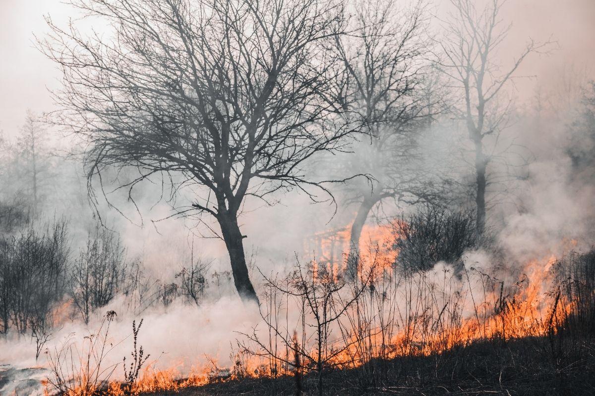 Em sete meses, Minas Gerais tem o maior número de incêndios em 11 anos