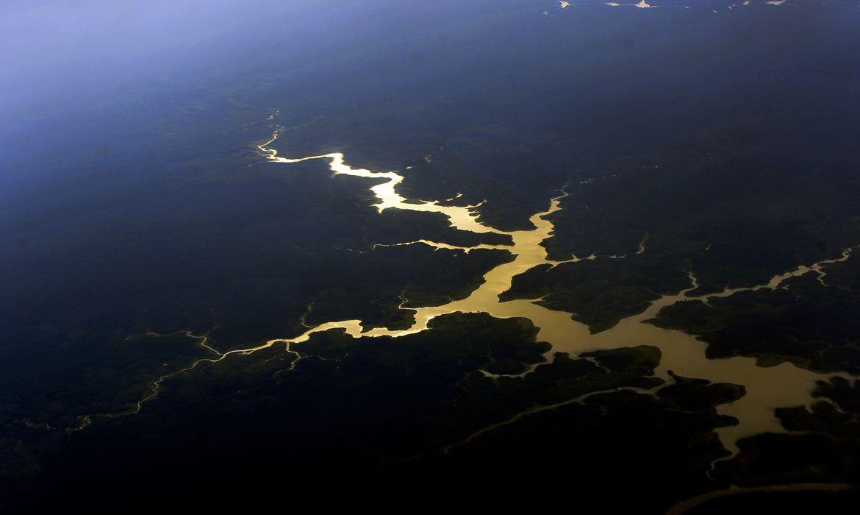 cop26:-brasil-quer-aprovar-regras-previstas-para-mercado-de-carbono