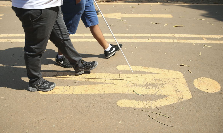 pessoas-com-deficiencia-em-2019-eram-17,3-milhoes,-de-2-anos-ou-mais