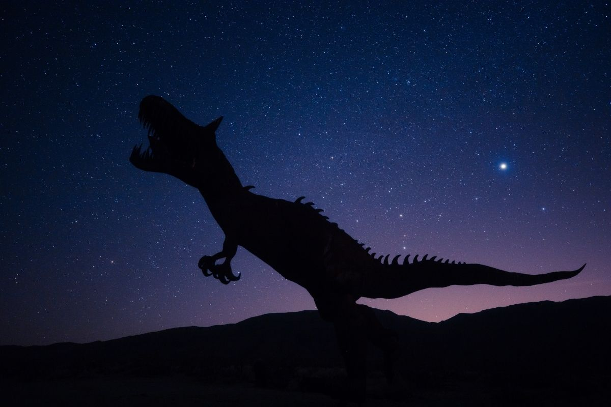 Cientistas descobrem duas novas espécies de dinossauro na China