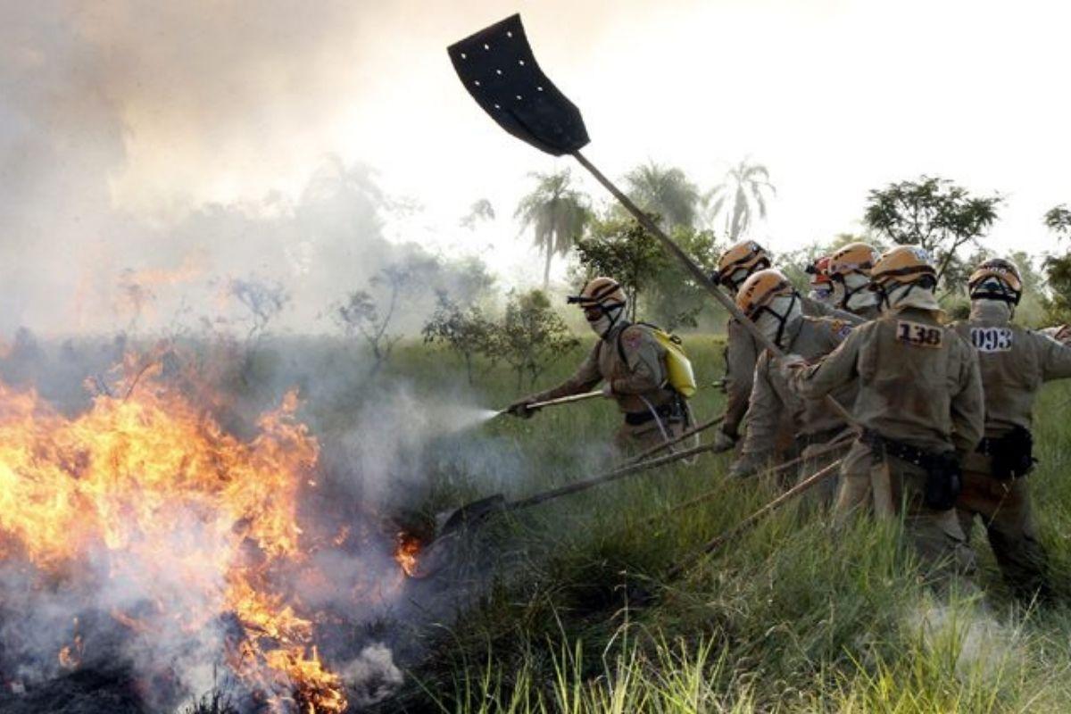 Mato Grosso do Sul clima seco e quente dificulta combate a incêndios