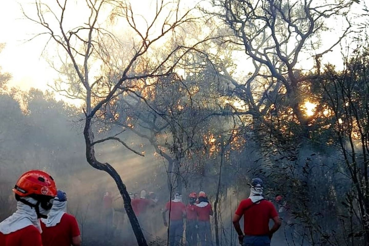 Parque do Juquery, na Grande São Paulo, ainda tem focos de incêndio