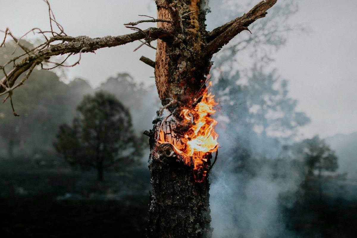 incendio-que-ilhou-turistas-ja-percorre-20-km-na-regiao-dos-veadeiros