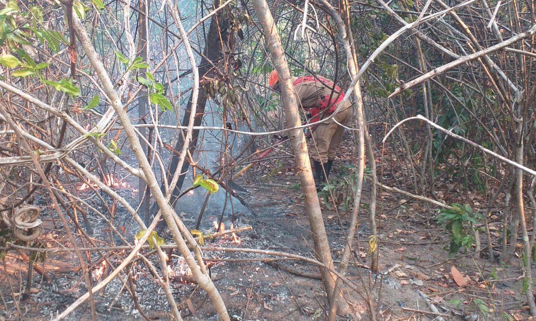 fogo-na-chapada-dos-veadeiros-afeta-14-mil-hectares